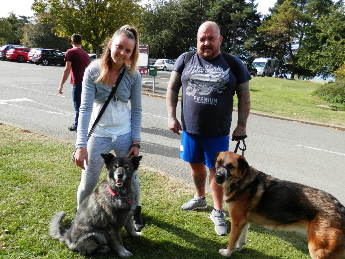 Fantastic to see Penny who was a difficult dog and her owner's have done a brilliant job with her